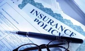 Chế độ tài chính mới đối với các doanh nghiệp bảo hiểm thực hiện thủy sản