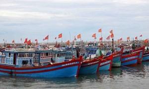 Sẽ chính thức thực hiện chính sách bảo hiểm phát triển thủy sản từ 25/8