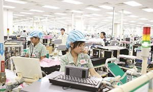 Giải đáp kiến nghị của doanh nghiệp Hàn Quốc