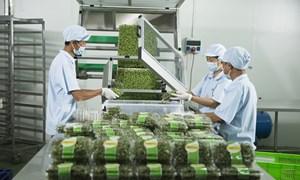 Cơ hội và thách thức với nông sản Việt Nam từ EVFTA