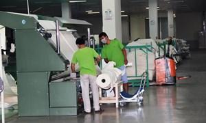 Nhiều doanh nghiệp ở Tây Ninh được hỗ trợ áp dụng hệ thống quản lý tiên tiến, công cụ cải tiến