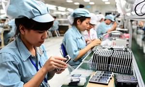 Tiếp tục hỗ trợ doanh nghiệp nâng cao năng suất chất lượng trong bối cảnh Cuộc Cách mạng công nghiệp 4.0