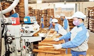Tăng cường đào tạo nguồn nhân lực, hỗ trợ doanh nghiệp nâng cao năng suất chất lượng