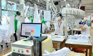 58/63 địa phương đã triển khai Dự án Nâng cao năng suất và chất lượng sản phẩm, hàng hóa