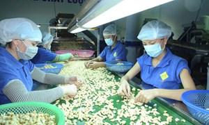 Đa dạng các hoạt động hỗ trợ doanh nghiệp tăng năng suất, chất lượng hàng hóa