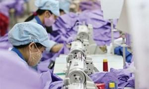 1.105 doanh nghiệp ở Phú Thọ nợ bảo hiểm xã hội 123,8 tỷ đồng