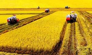 Quy hoạch tổng thể khu và vùng nông nghiệp ứng dụng công nghệ cao đến năm 2020