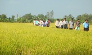 Đẩy mạnh ứng dụng công nghệ thông tin vào nông nghiệp tại Hà Nam
