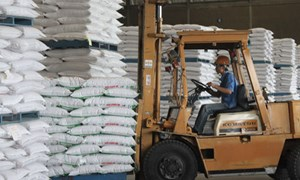 Quy định về đấu giá hạn ngạch thuế quan nhập khẩu đường năm 2017