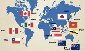 Lợi ích kỳ vọng từ Hiệp định CPTPP với Việt Nam