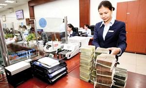 Tận dụng cơ hội phát triển bền vững thị trường tài chính tiêu dùng