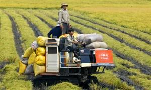 ODA nông thôn Việt Nam là hình mẫu thế giới