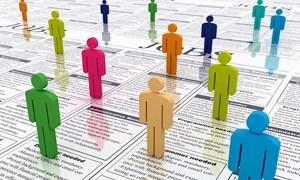 Tỷ lệ thất nghiệp của cả nước ở mức thấp nhất trong một năm qua