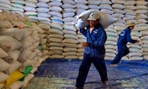 Xuất cấp hơn 12.000 tấn gạo hỗ trợ dịp Tết Nguyên đán và giáp hạt 2014
