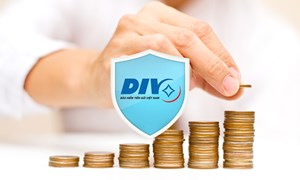 Hạn mức trả tiền bảo hiểm - nhìn từ phía người gửi tiền và tổ chức tín dụng