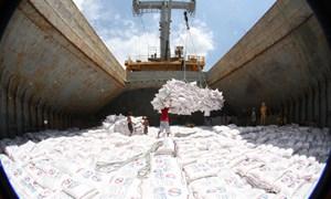 Tác động từ thị trường đến giá gạo xuất khẩu của Việt Nam
