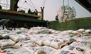 Giải pháp tài chính thúc đẩy xuất khẩu gạo vùng đồng bằng Sông Cửu Long