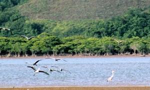 Bàn về nguyên tắc phát triển bền vững của ngành Du lịch Việt Nam