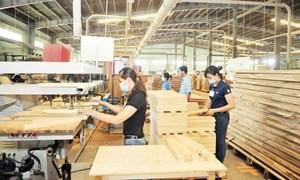 Giải pháp đẩy mạnh xuất khẩu gỗ và sản phẩm gỗ của Việt Nam
