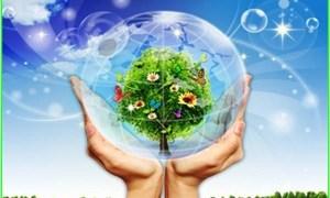 Kinh nghiệm quốc tế về chính sách tài chính ứng phó với biến đổi khí hậu
