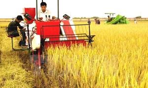 Vận dụng tư tưởng Hồ Chí Minh về xây dựng và phát triển kinh tế nông nghiệp, nông thôn