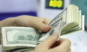 """Tỷ giá và """"bài toán"""" ổn định trong năm 2013"""