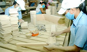 Gần 6.700 doanh nghiệp tại Hà Nội ngừng hoạt động