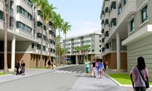 """Khách """"ào ào"""" đặt mua căn hộ 310 triệu đồng tại Hà Nội"""