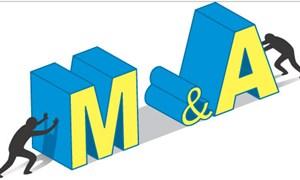 Công ty chứng khoán lớn nói không với M&A