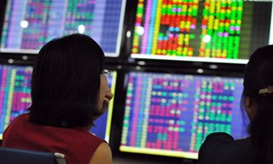 Hàng loạt cổ phiếu bất thường trên sàn chứng khoán