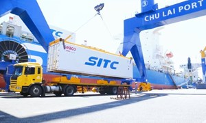 Logistics trọn gói cho nông nghiệp – Thilogi góp phần mang nông sản Việt ra thế giới