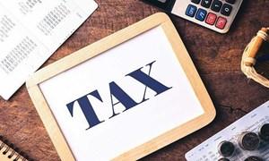 Kê khai thuế giá trị gia tăng đối với hoạt động xây dựng ngoại tỉnh