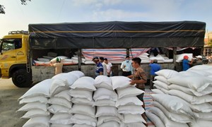 Cục Dự trữ Nhà nước khu vực TP. Hồ Chí Minh thực hiện xuất cấp hàng dự trữ quốc gia kịp thời, hiệu quả