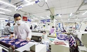 Hơn 80% doanh nghiệp quy mô lớn thực hiện đổi mới sản phẩm từ Chương trình 712