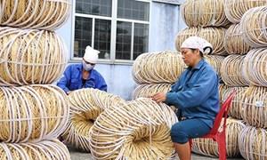 Khu vực kinh tế phi chính thức ở Việt Nam: Thực trạng và khuyến nghị