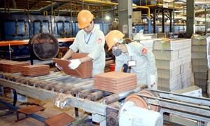 Nâng cao năng suất, chất lượng sản phẩm để doanh nghiệp chủ động hội nhập quốc tế