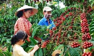 Đề xuất quy định mới về quản lý và sử dụng phí trong lĩnh vực bảo vệ thực vật
