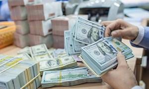 Phạt đến 250 triệu đồng hành vi xuất, nhập khẩu ngoại tệ tiền mặt không đúng quy định
