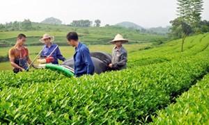 Tăng cường vai trò của Nhà nước về an sinh xã hội đối với nông dân