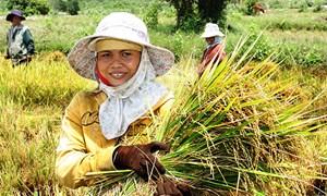 AFD hỗ trợ những khoản mới giúp Việt Nam xóa đói giảm nghèo