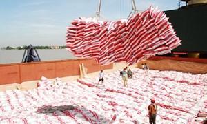 Cần thay đổi tư duy trong xuất khẩu gạo