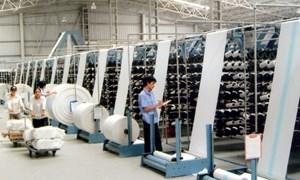 Cần vực dậy khu vực sản xuất trong nước