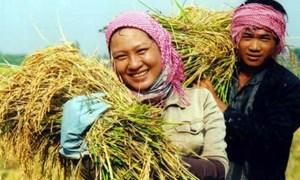 Tín dụng tín chấp cho nông nghiệp: dễ và khó