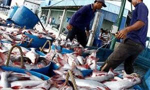Hàng nông - thủy sản nhiều cơ hội vào thị trường Bắc Âu
