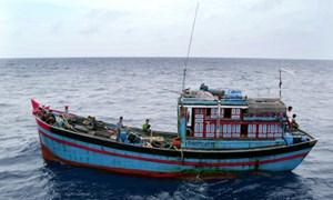 Ngân sách trả 100% phí bảo hiểm cho thuyền viên tàu cá