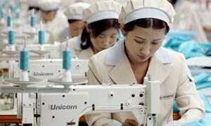 Chưa cần FTA, Hàn Quốc đã rộng cửa cho thủy sản, dệt may