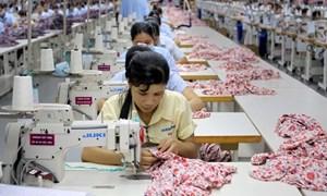 Làm gì để Việt Nam có thêm doanh nghiệp lớn?