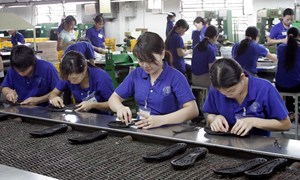 Thanh tra các doanh nghiệp có số hoàn thuế lớn: Tạo môi trường cạnh tranh bình đẳng