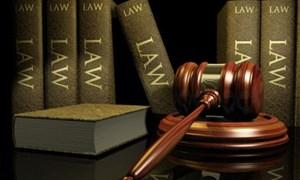 Tiếp tục tập trung rà soát văn bản quy phạm pháp luật năm 2015