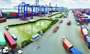 Khai thác số liệu hàng hóa xuất nhập khẩu phải có sự cho phép của Hải quan